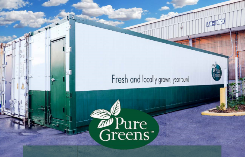 Containers by Pure Greens