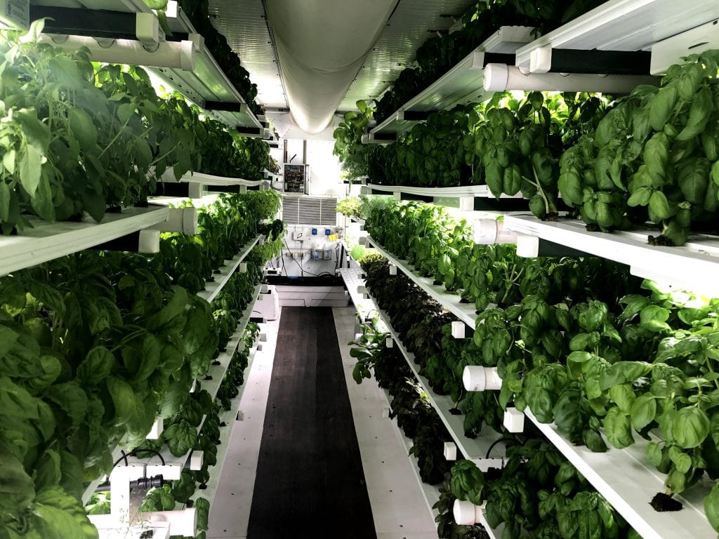 Restaurants Consider Container Farming