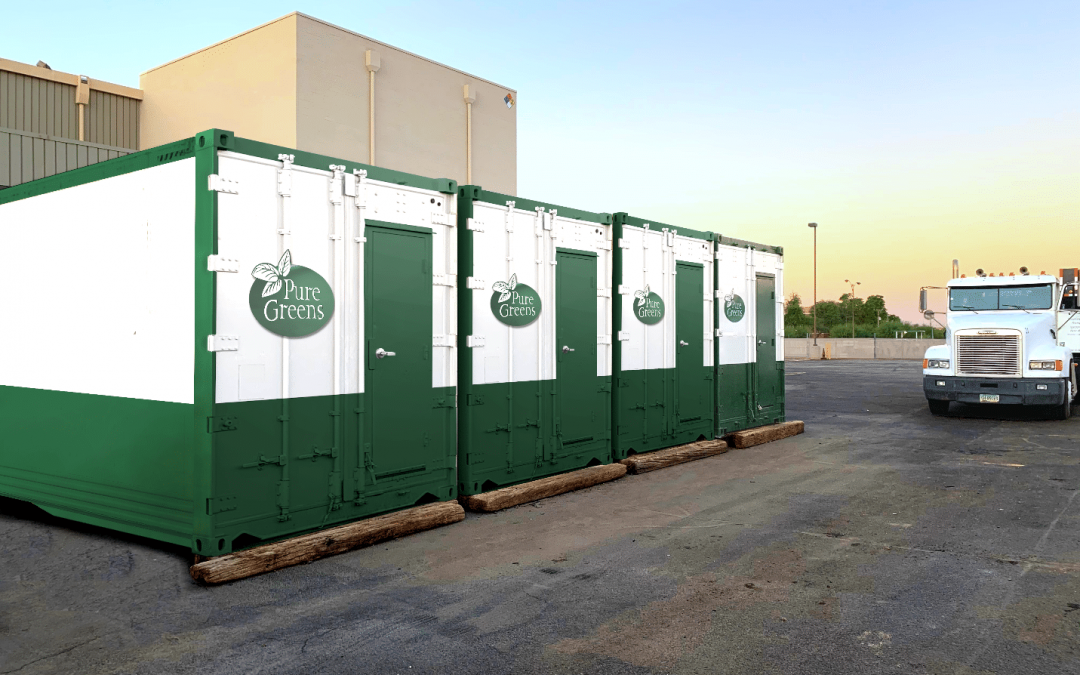 Three Pure Greens shipping container farms