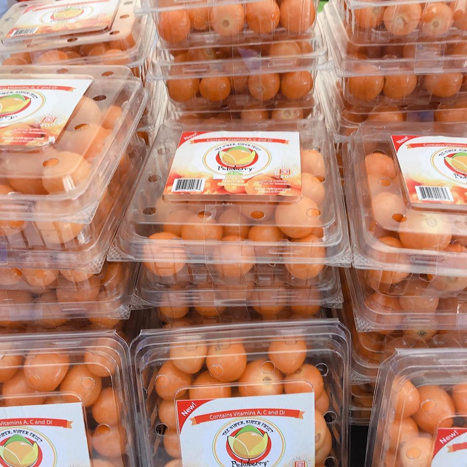 fresh eggs at the Old Town Farmers Market