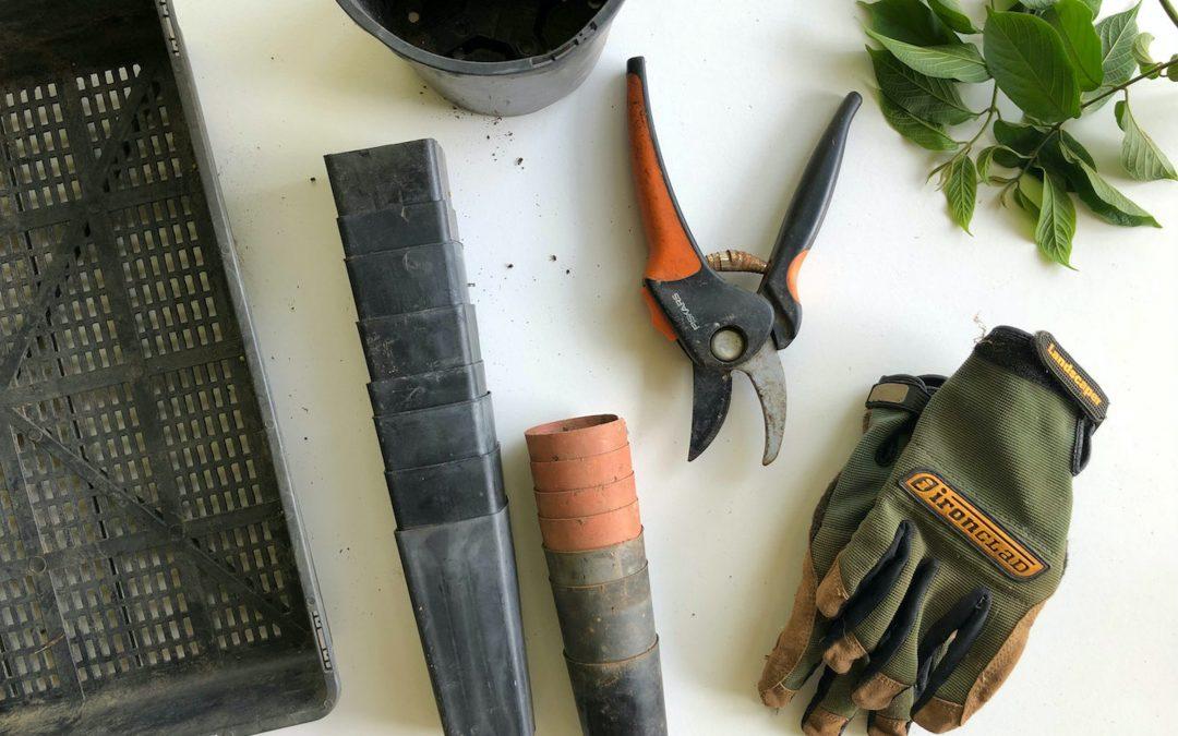 10 Helpful Tools You Need for an Indoor Farm