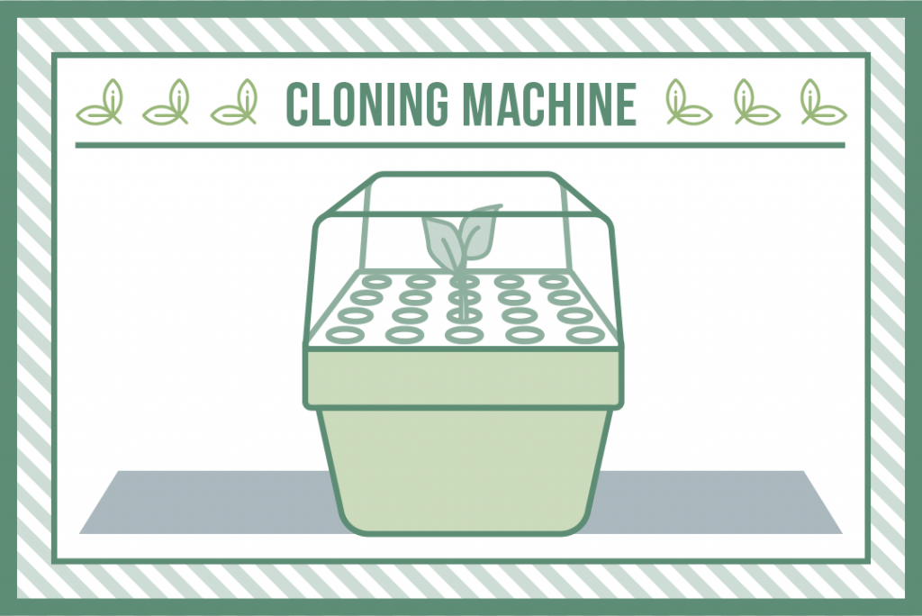 plant cloning with a cloning machine