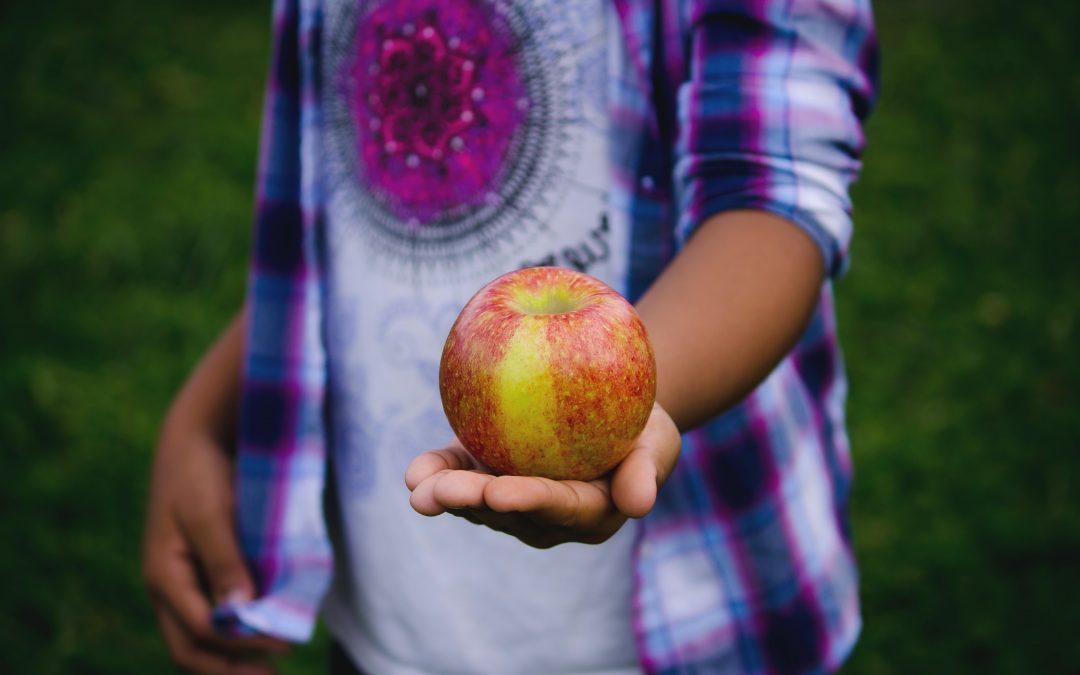 Benefits of Farm to School Programs