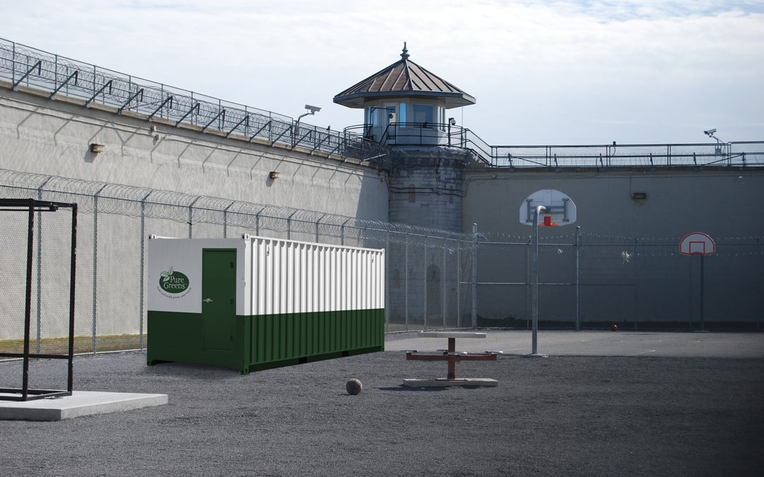 How Hydroponic Agriculture Reduces Recidivism for Correctional Facilities